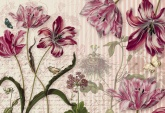 Flowers and Textures (Imagine 2) poszter - Merian