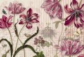Flowers and Textures (Imagine 2) poszter - Merian