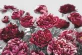 Flowers and Textures (Imagine 2) poszter - Temptation