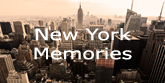Mr Perswall New York Memories